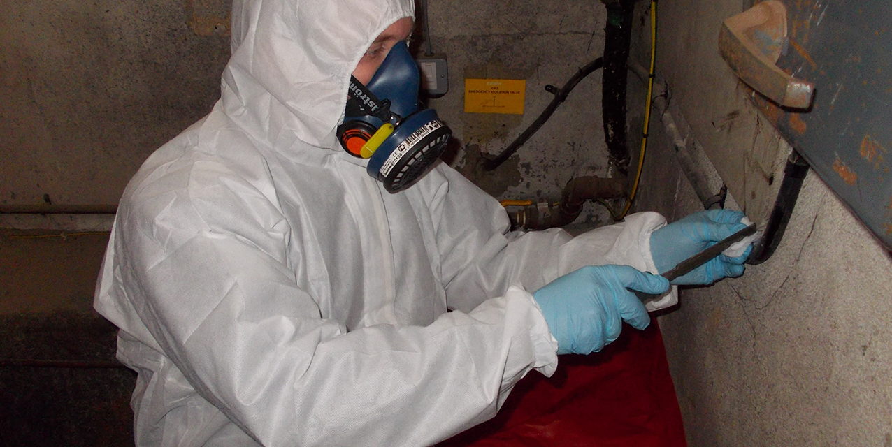 Asbestos survey in action