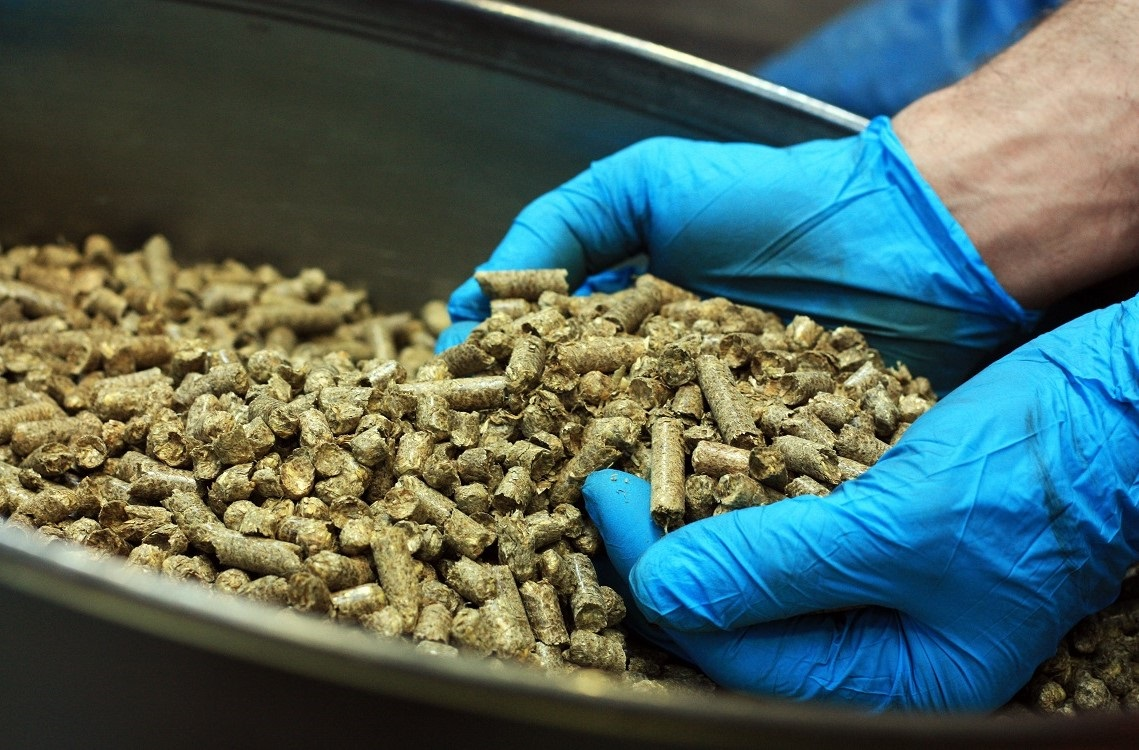 Solid biofuels